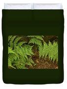 Fern Garden Duvet Cover