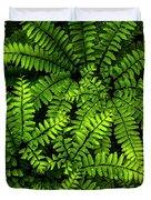 Ferns After The Rain Duvet Cover