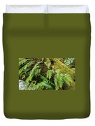 Ferns Duvet Cover