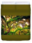 Ferns On Florida Oaks Duvet Cover