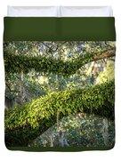 Ferns On Live Oak Duvet Cover