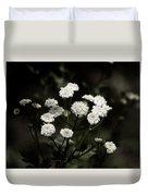 Feverfew - Tanacetum Parthenium Duvet Cover