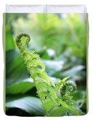 Fiddleback Fern Plant Unfurling In Springtime Duvet Cover