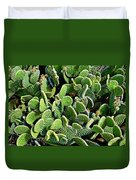 Field Of Cactus Paddles Duvet Cover