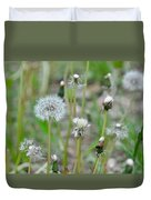 Dandelions In Seed Duvet Cover