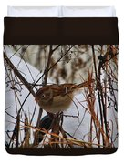 Field Sparrow Duvet Cover
