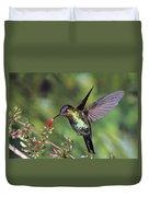 Fiery-throated Hummingbird Panterpe Duvet Cover