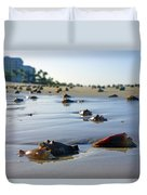 Fighting Conchs On The Beach In Naples, Fl Duvet Cover