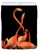 Fighting Flamingos Duvet Cover