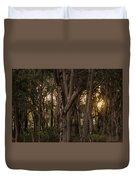 Filtered Sunlight Duvet Cover