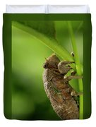 Final Instar Of A Cicada Emerging From The Ground To Molt On A L Duvet Cover
