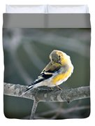 Finch Courtsy Duvet Cover