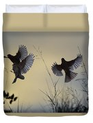 Finches Silhouette With Leaves 6 Duvet Cover