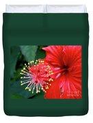 Fireworks - Hibiscus Duvet Cover