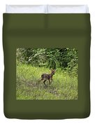 First Baby Fawn Of The Year Duvet Cover
