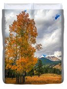 First Fall Colors In Rocky Mountain National Park Duvet Cover
