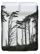 First Line Trees Along The Pacific Ocean Duvet Cover