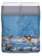 First Rut Mule Deer Buck Duvet Cover