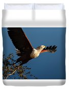 Fish Eagle Taking Flight Duvet Cover