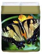 Fish Eye Butterfly Duvet Cover