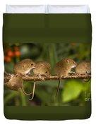 Five Eurasian Harvest Mice Duvet Cover