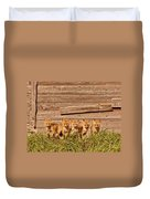 Five Fox Kits By Old Saskatchewan Granary Duvet Cover