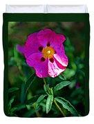 Orchid Rock Rose At Pilgrim Place In Claremont-california  Duvet Cover