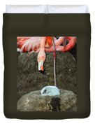 Flamingo And Chick Duvet Cover