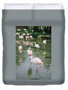 Flamingo Bath  Duvet Cover