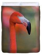 Flamingo Portrait - Sacramento Zoo Duvet Cover