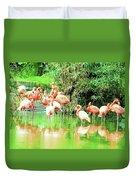 Flamingoes Duvet Cover