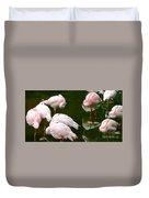 Flamingos 10 Duvet Cover