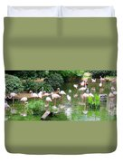 Flamingos 4 Duvet Cover