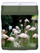 Flamingos 6 Duvet Cover