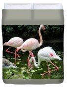 Flamingos 8 Duvet Cover