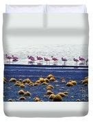 Flamingos At Torres Del Paine Duvet Cover