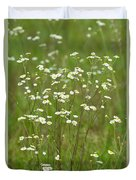Fleabane In The Meadow Duvet Cover