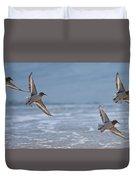Flight Of The Sanderlings Duvet Cover