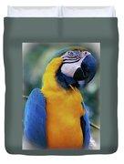 Flirtacious Macaw Duvet Cover
