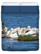 Flock Of White Pelicans Duvet Cover
