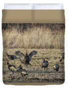 Flock Of Wild Turkeys Duvet Cover