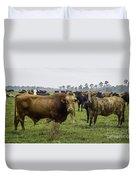 Florida Cracker Cows #2 Duvet Cover