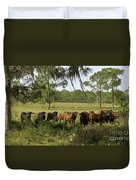 Florida Cracker Cows #3 Duvet Cover