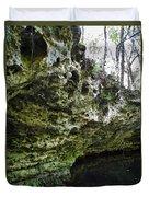 Florida Grotto Duvet Cover