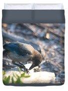 Florida Scrub Jay Breakfast Time Duvet Cover