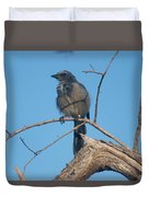 Florida Scrub Jay Watching The Lay Of The Scrub Duvet Cover