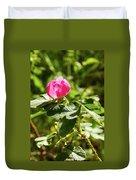 Flower Of Eglantine - 2 Duvet Cover