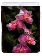Flower - Orchid - Phalaenopsis - The Cluster Duvet Cover