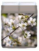 Flowering Cherry Tree Branch 4 Duvet Cover