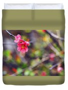 Flowering Quince In Spring Duvet Cover